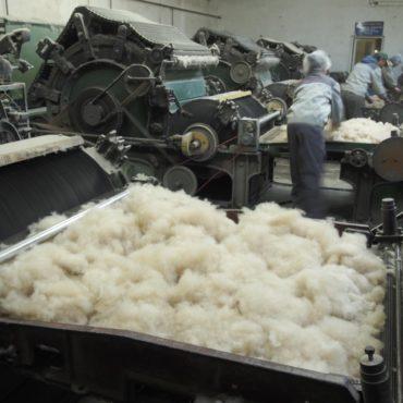 Сортировка кашемира фабрика Гоби фото