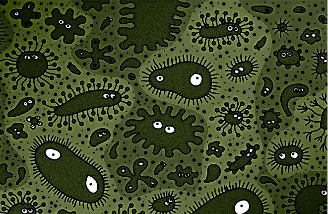 микроорганизмы